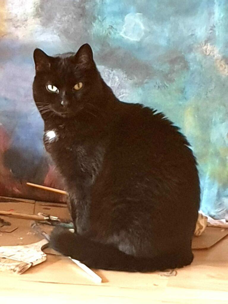 Katze vor Gemälde